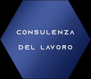 consulenza-del-lavoro-esagono